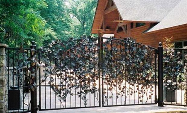 cổng hợp phong thủy