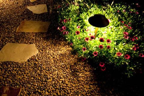 Sân vườn lung linh