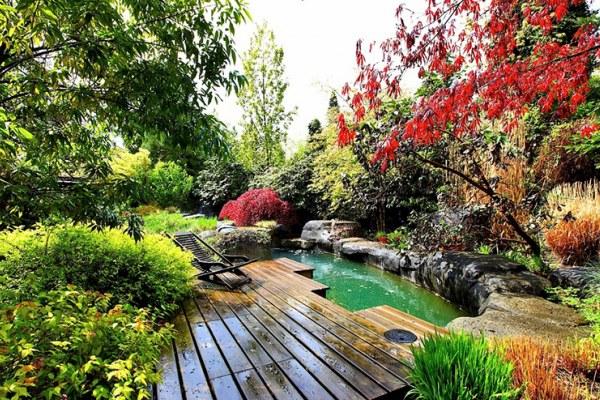 Không gian thiên nhiên với ao cá trong vườn