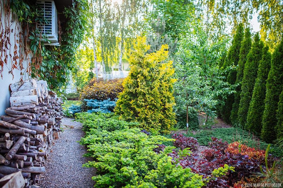 làm đẹp khu vườn