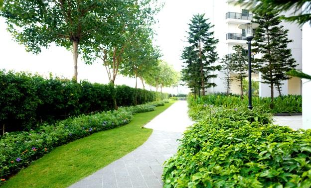 dự án Mulberry Lane