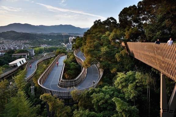Con đường đi bộ tuyệt đẹp trên ngọn cây của Trung Quốc