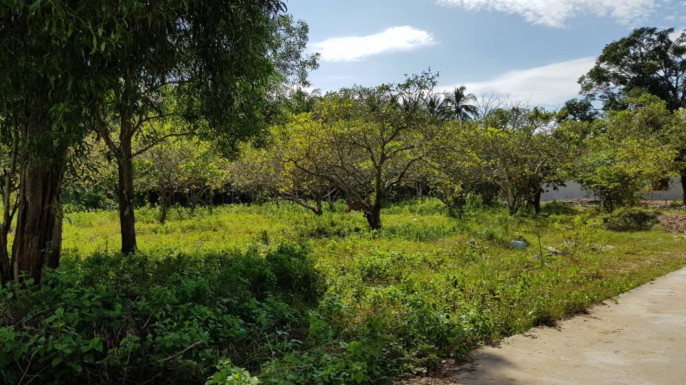khu vực Ông Lang - Phú Quốc