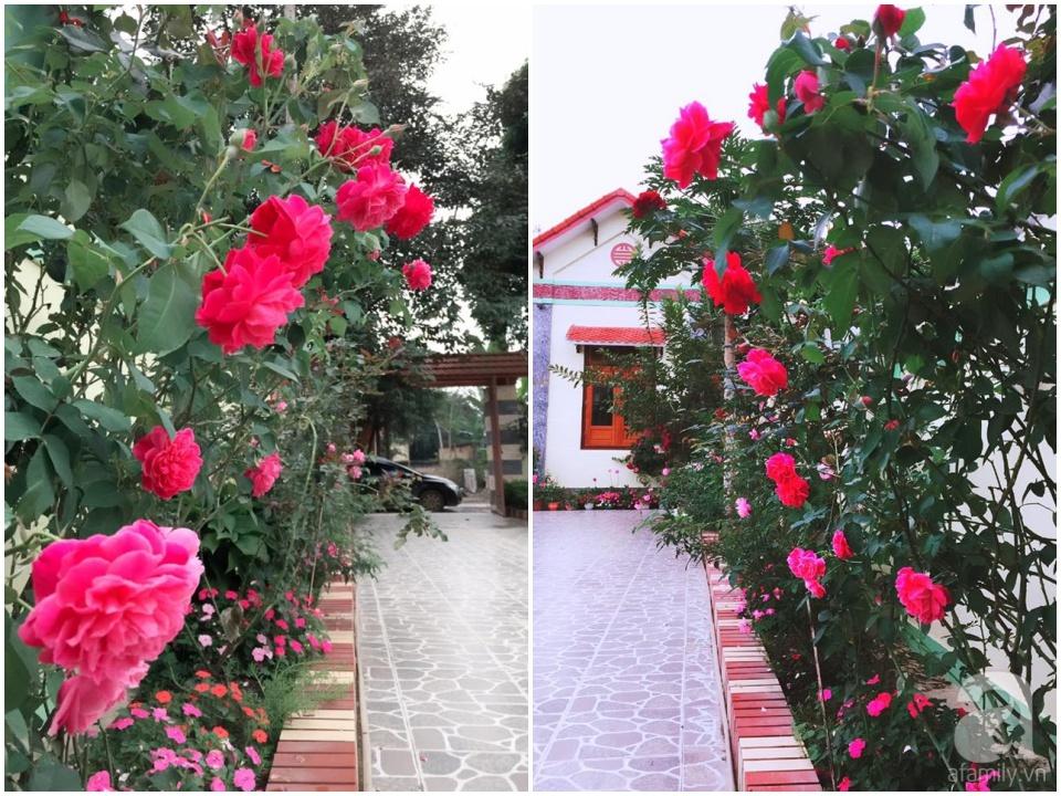vườn hoa nhà đẹp