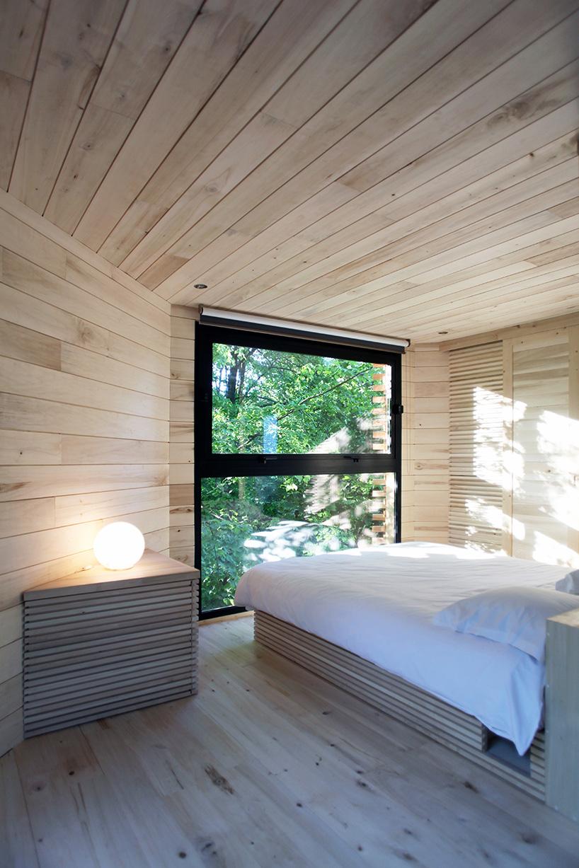 """Ngôi nhà """"tổ chim"""" trên cây sồi trăm tuổi ở Pháp"""
