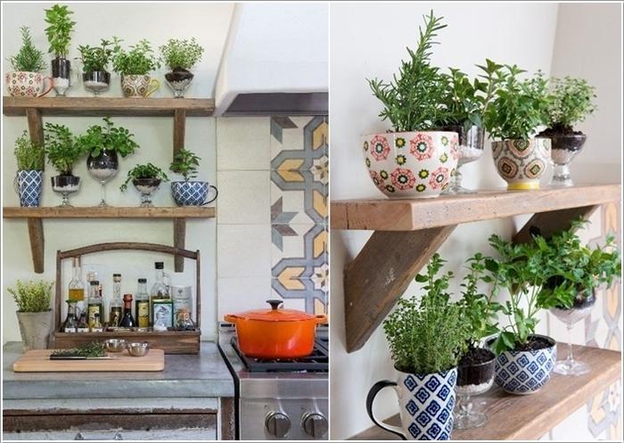 Trồng cây xanh trong bếp