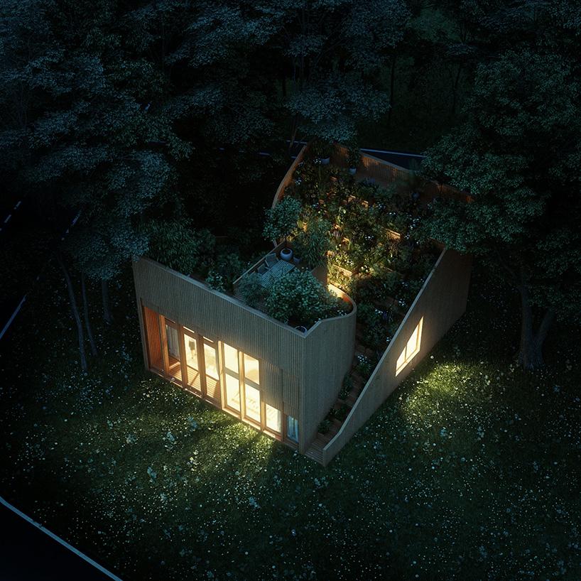 Ngôi nhà độc đáo với cây xanh phủ kín mái 10