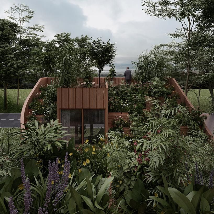 Ngôi nhà độc đáo với cây xanh phủ kín mái 2
