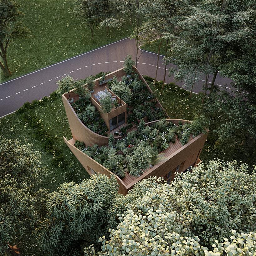Ngôi nhà độc đáo với cây xanh phủ kín mái 1