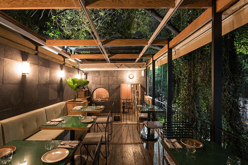 Ghé thăm không gian xanh mát trong nhà hàng ở Mexico City 7