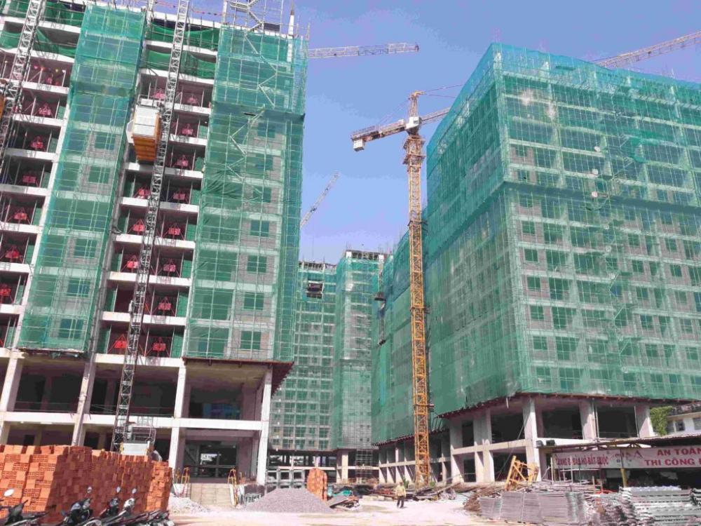 BĐS Tây Bắc Tp.HCM: Nhu cầu mua cao, giao dịch sôi động