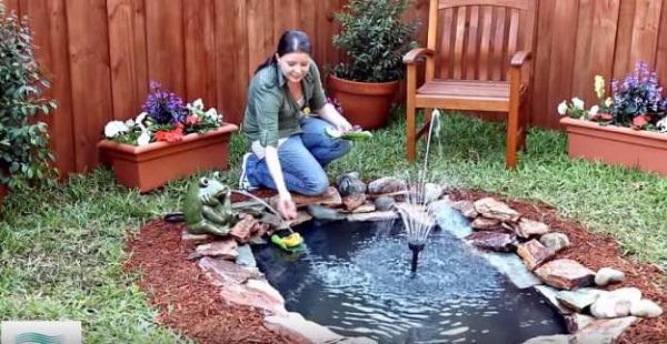 làm ao vườn tại nhà