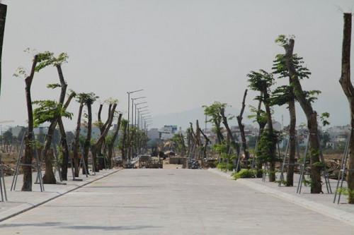 đất vàng Nha Trang