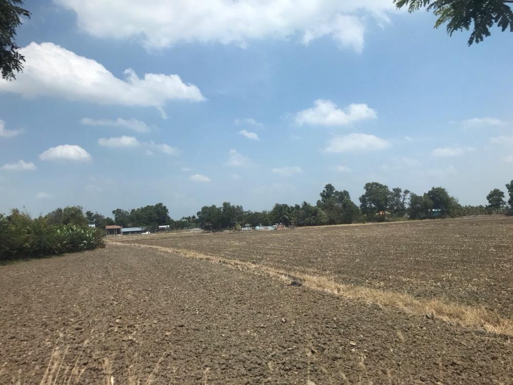 san lấp đất nông nghiệp rao bán