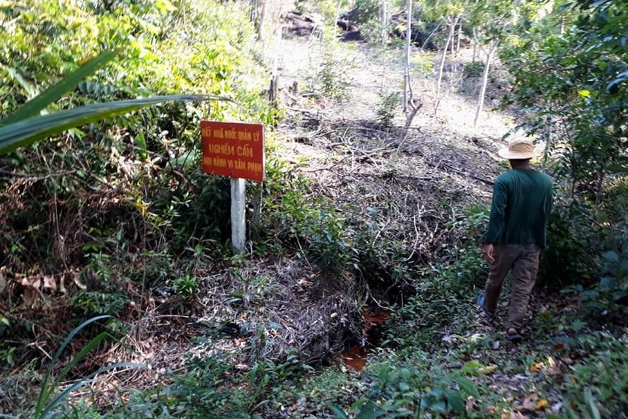 rao bán đất rừng