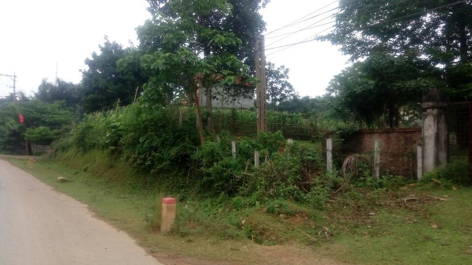 Hà Nội: Sốt đất ở Hòa Lạc, giá tăng gấp 4-5 lần 1
