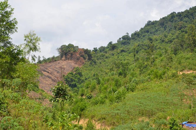Làm thế nào khi bị bồi thường nhầm loại đất?