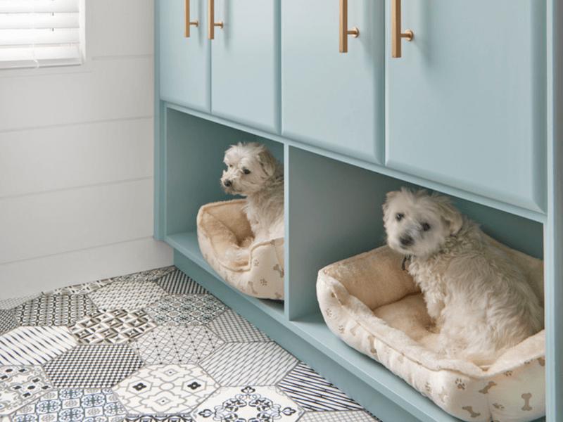 Ý tưởng cải tiến nội thất cho người nuôi thú cưng