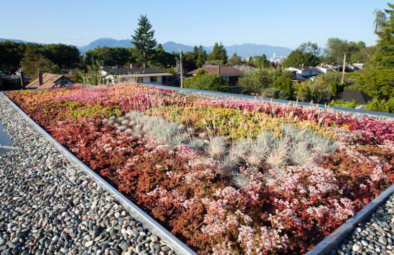 """Những khu vườn trên mái khiến """"vạn người mê"""" 3"""