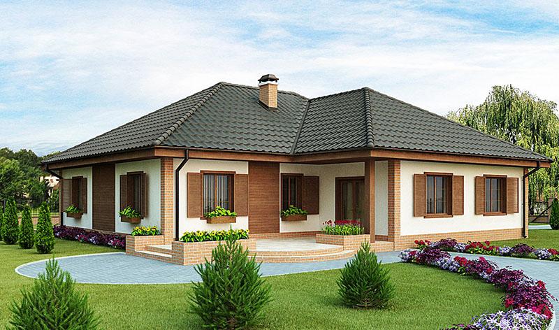Biệt thự vườn 1 tầng mái thái