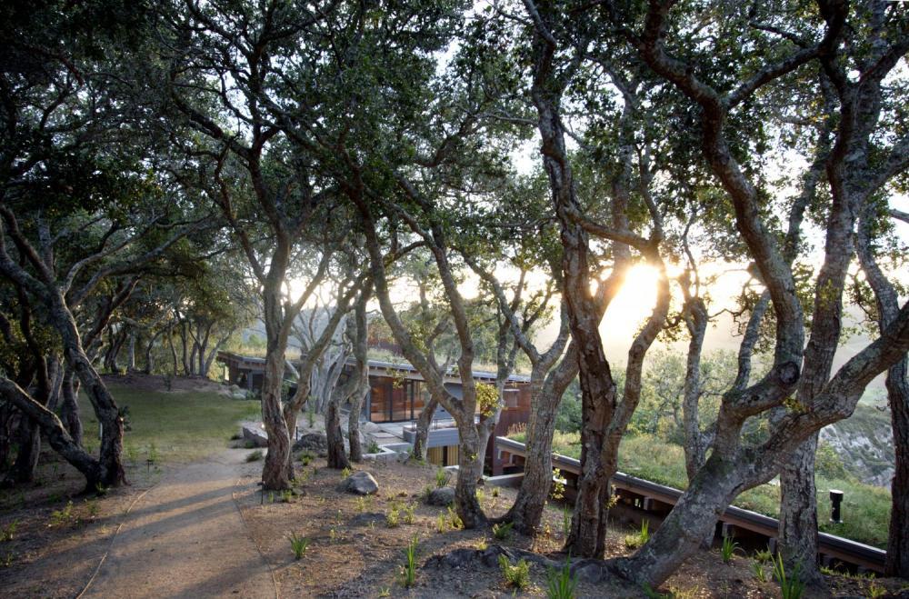 Ngôi nhà hiện đại được xây dựng theo xu hướng bền vững tại California