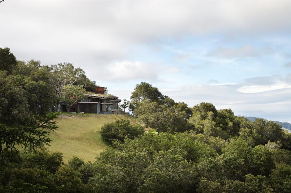 Ngôi nhà được bao quanh bởi đồng cỏ xanh mướt và rừng sồi