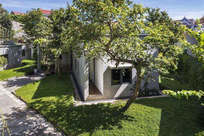 nhà đẹp dưới tán cây