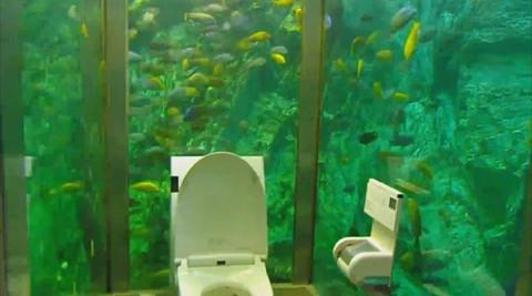 Ngỡ ngàng với nhà vệ sinh được thiết kế như thủy cung