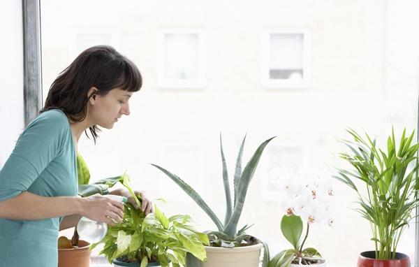 cách giảm ô nhiễm không khí trong nhà