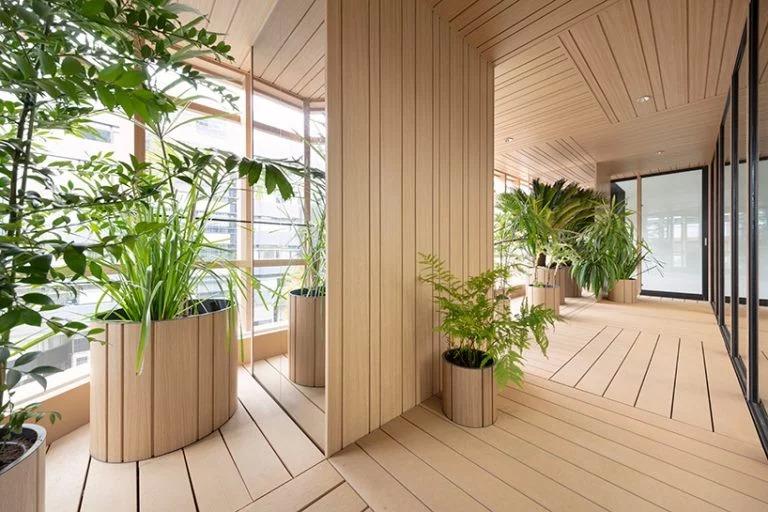 Văn phòng xanh mát ở Tokyo