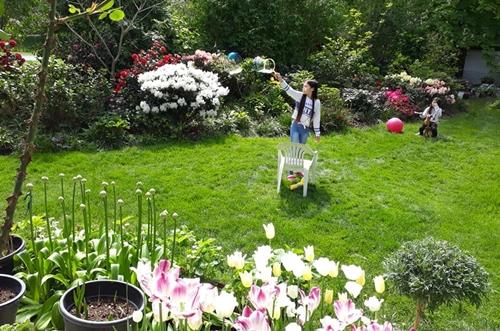 vườn hoa độc đáo