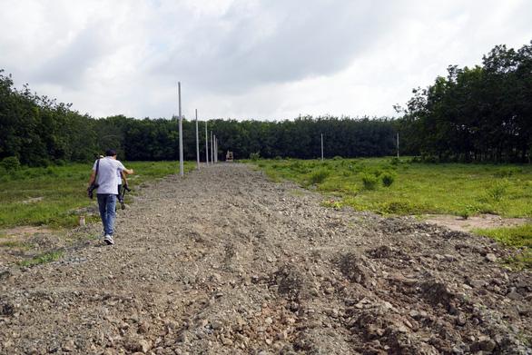 cưỡng chế đất nông nghiệp phân lô