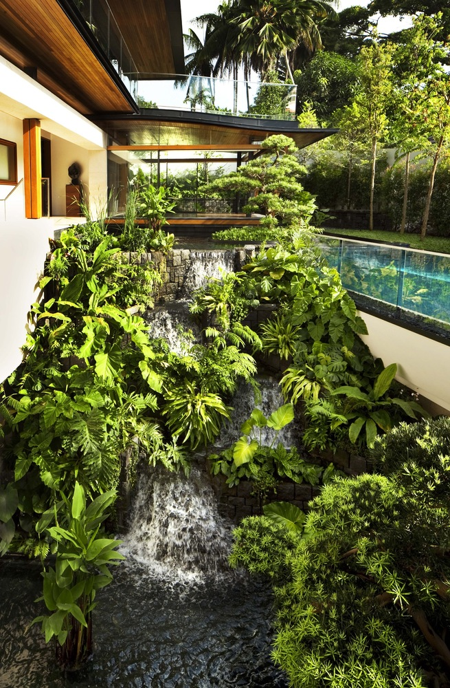 Ngôi nhà xanh mát như vườn bách thảo