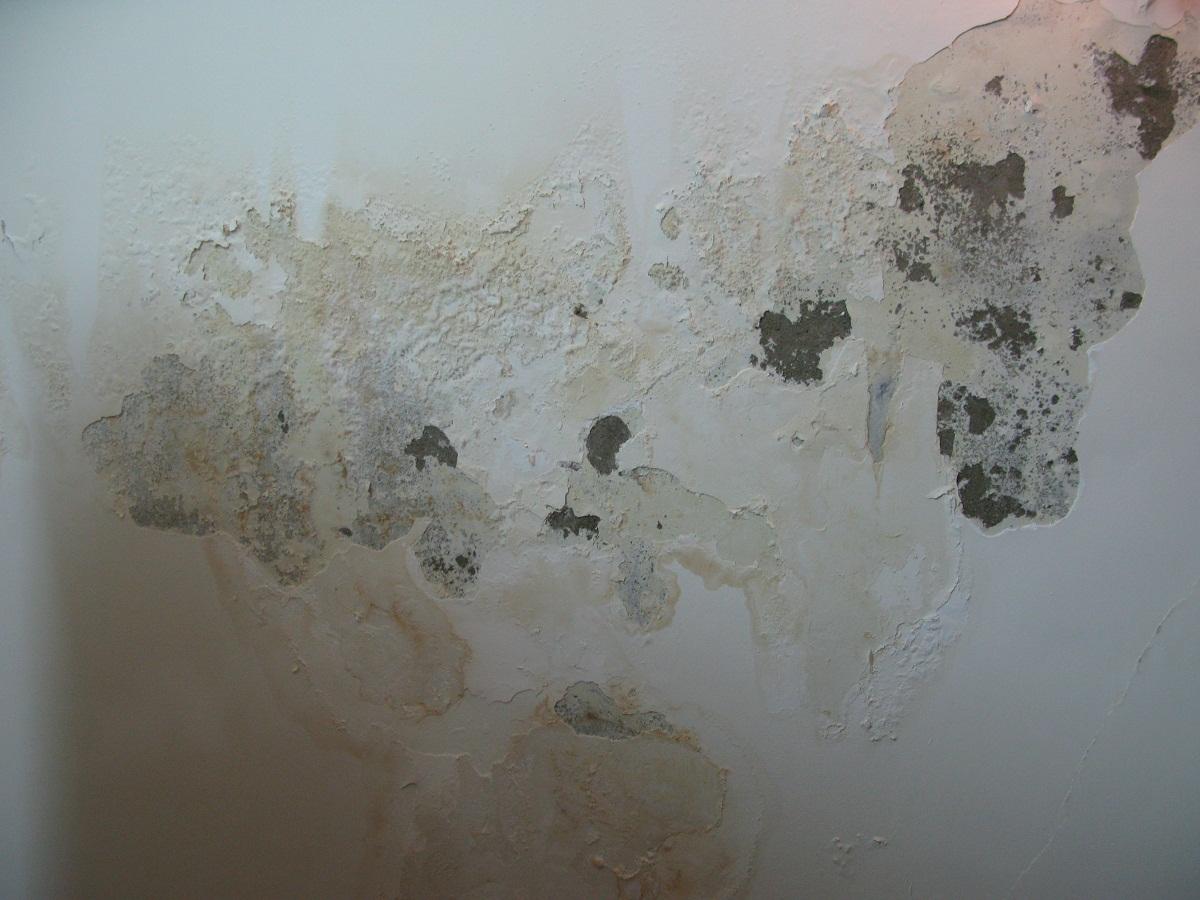 tường bong tróc