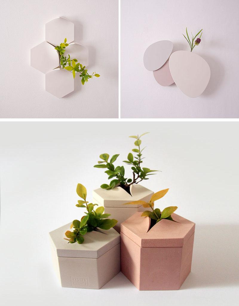 bộ sưu tập bình hoa gắn tường
