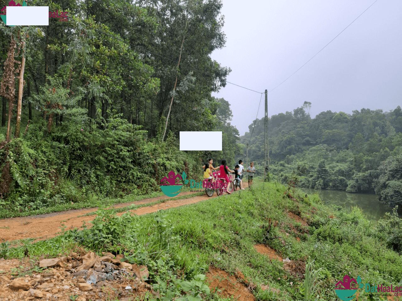 chi tiết Bán gấp lô đất thổ cư tại Tiến Xuân Thạch Thất Hòa Lạc LH: 0968175786