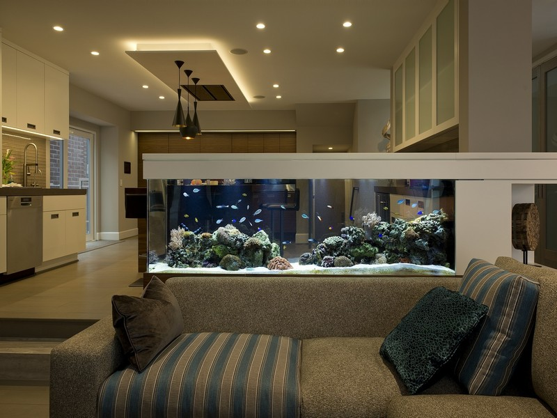 bể cá phong thủy