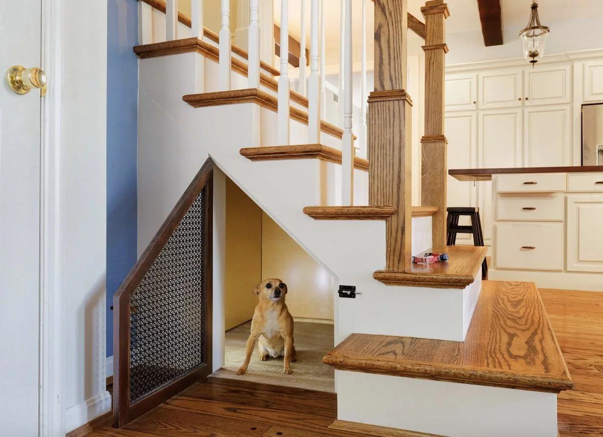 phòng cho cún cưng dưới gầm cầu thang