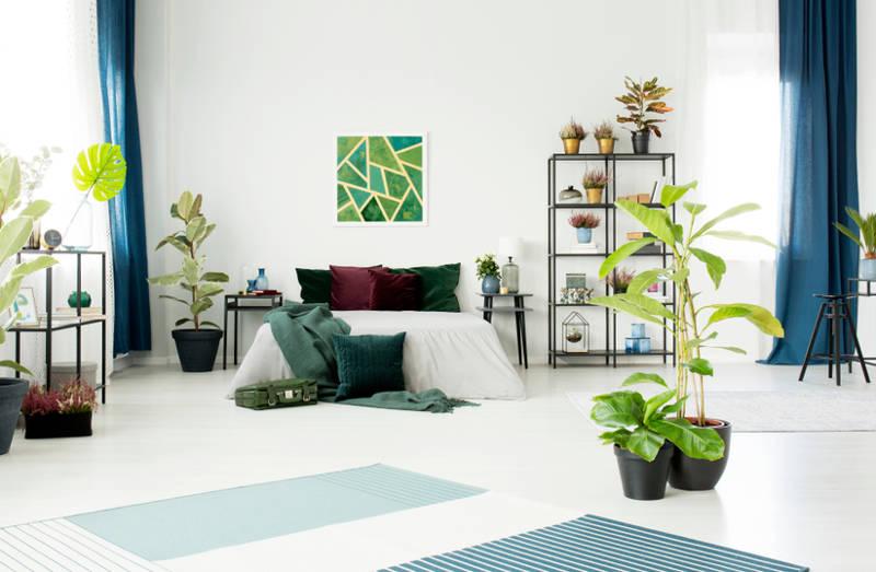 phòng ngủ với các chi tiết màu xanh lá và xanh dương