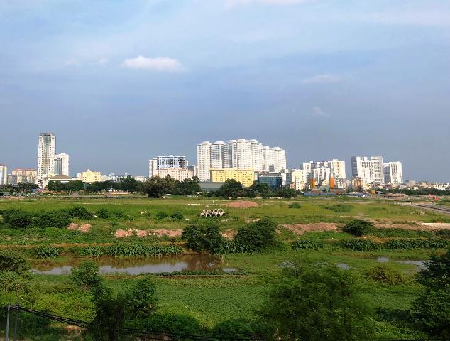 Khu đất trống phủ đầy cây cỏ dại, phía xa có nhiều tòa nhà cao tầng.