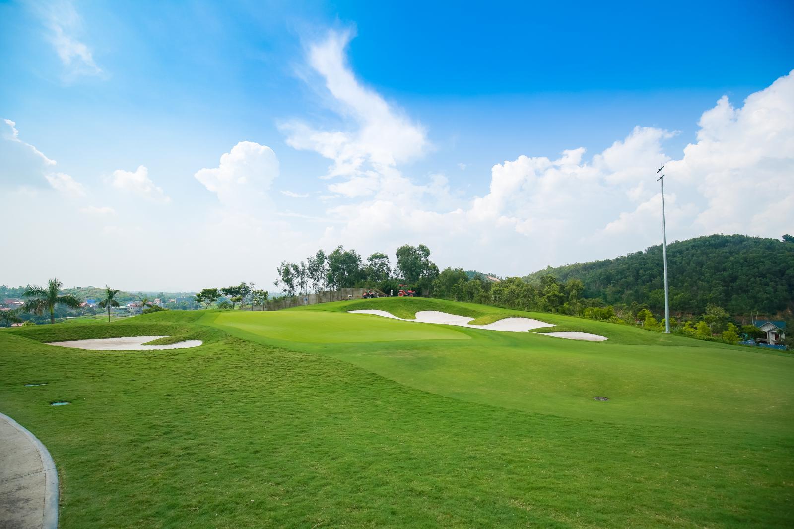 Sân golf xanh rộng lớn với nhiều cây cối phía xa