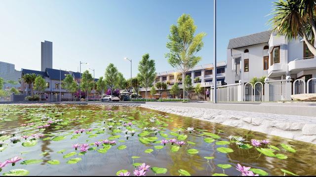 Hồ sen tạo cảnh quan cho dự án Khu dân cư Chí Lành