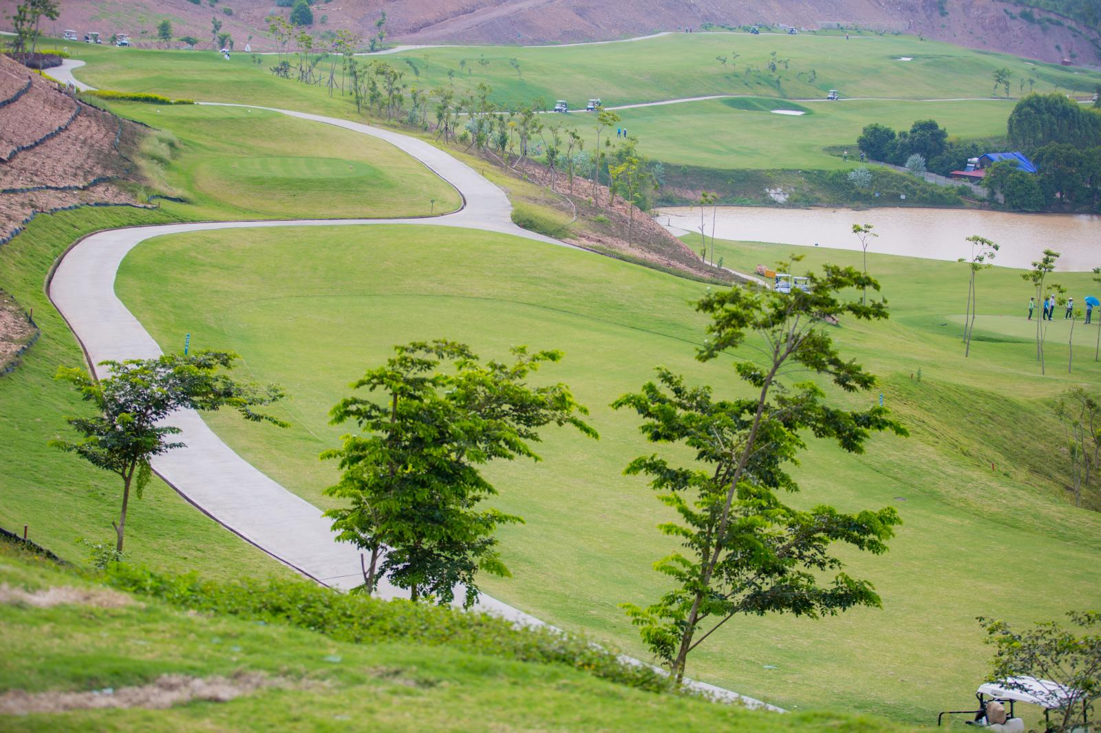 Một sân Golf trên đồi cao với một vài cây xanh nhỏ