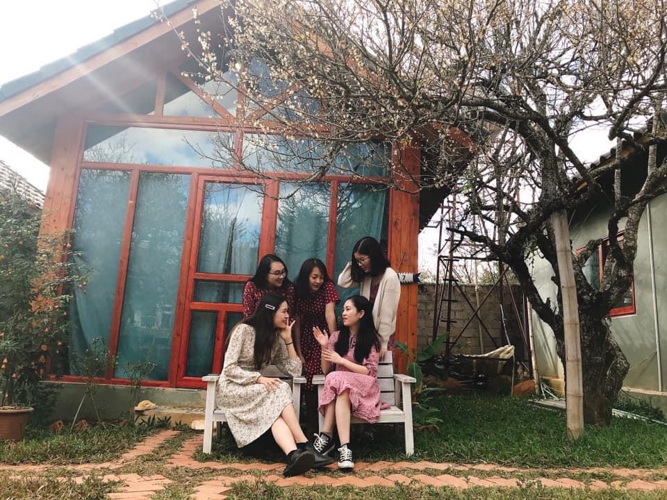 Một nhóm bạn trẻ ngồi trên ghế trò chuyện phía trước một homestay, dưới gốc cây mơ nở hoa,