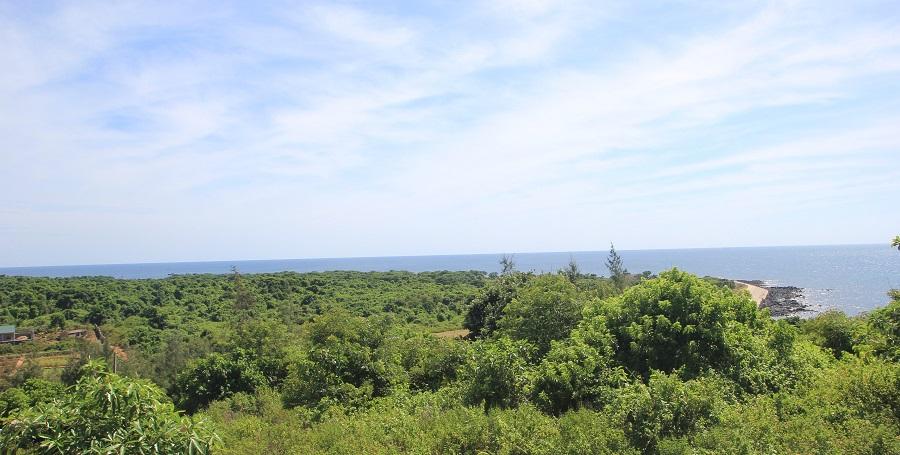 Dải đất có nhiều cây xanh bao phủ nằm ven biển