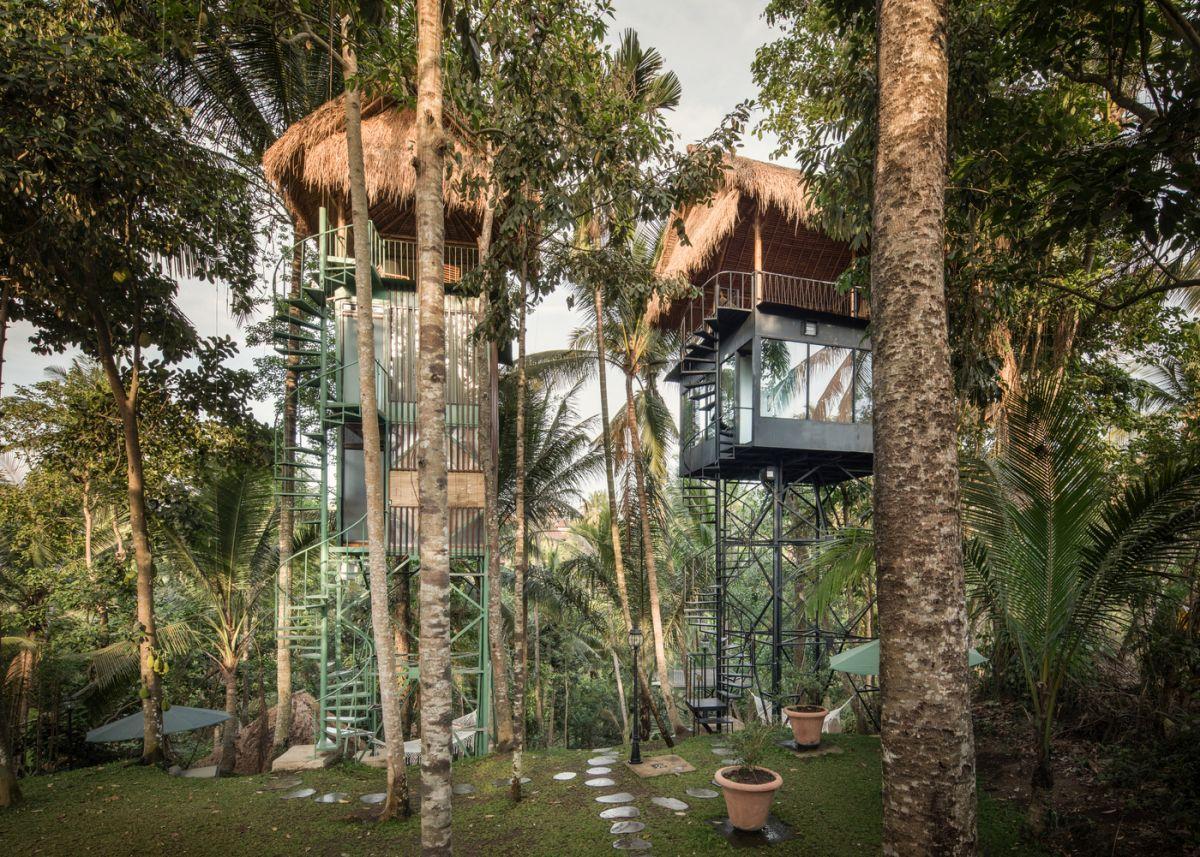 khách sạn trên cây giữa rừng nhiệt đới