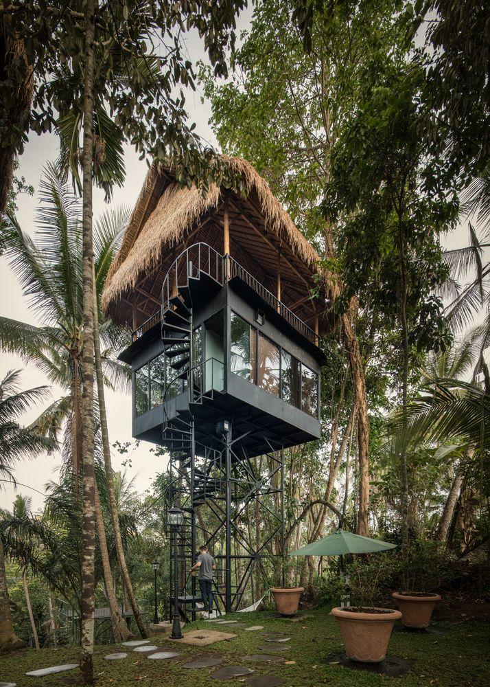 cận cảnh khách sạn trên cây