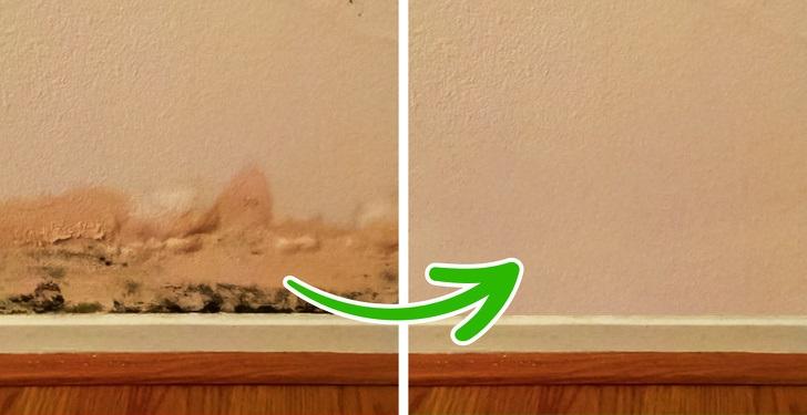 tường bị nấm mốc và tường nhà sau khi được làm sạch