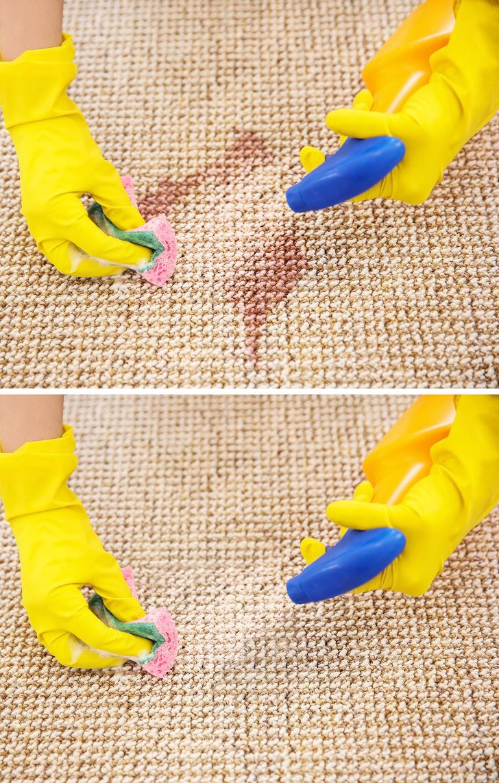 vệ sinh thảm với giẻ và dung dịch tẩy rửa chuyên dụng