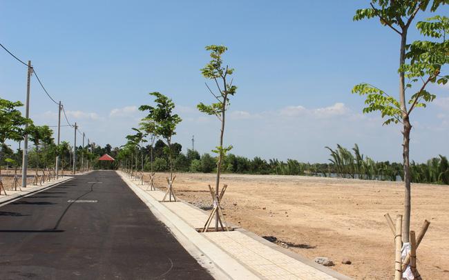 đất nền Bình Dương nằm cạnh con đường có hai hàng cây